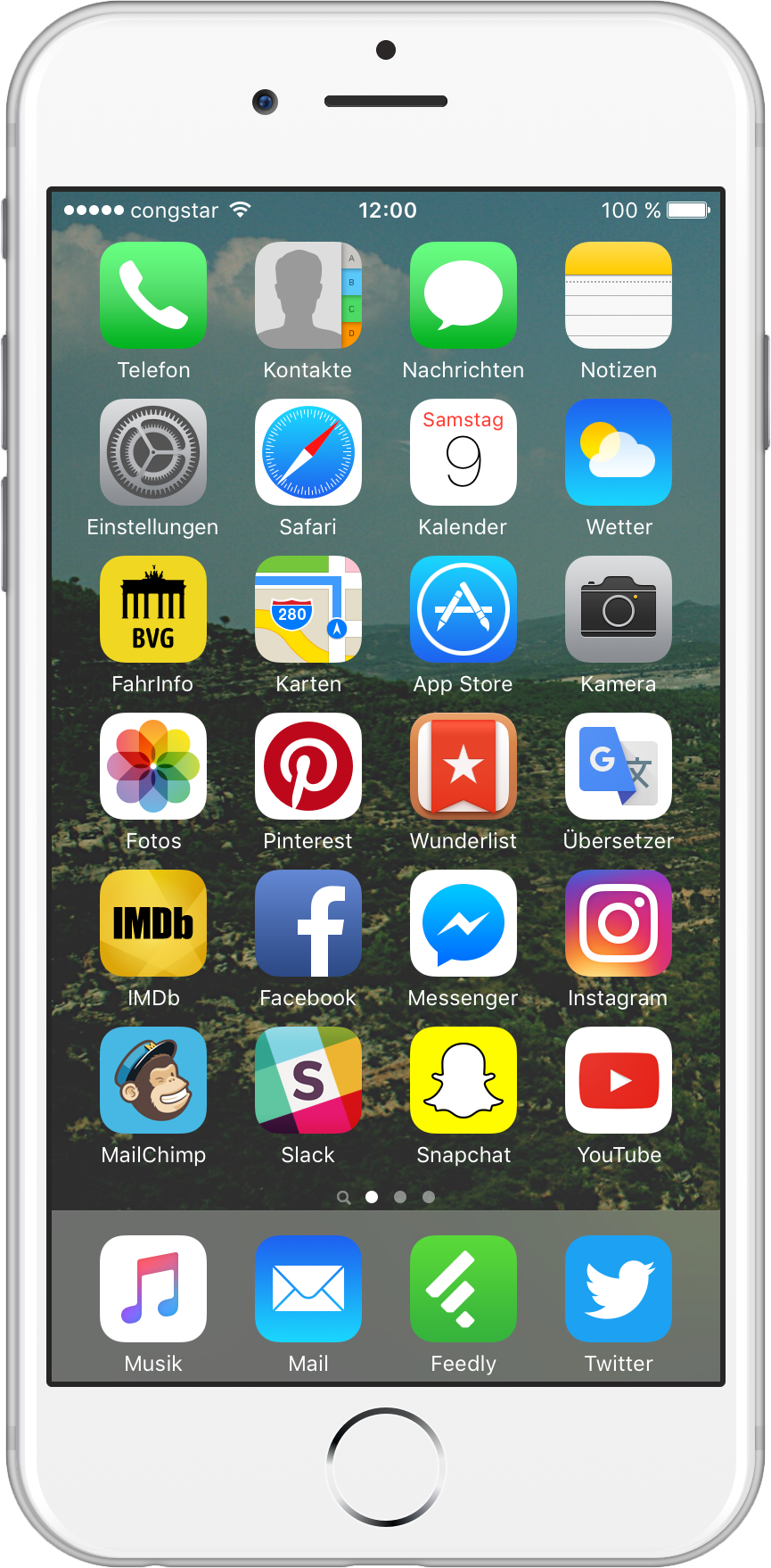 DavidStreit-Homescreen-01